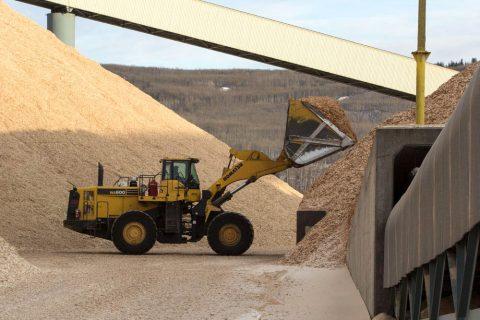 Frontlader, der Hartholzhackschnitzel zu einem Hackschnitzelhaufen in der Mercer Peace River Zellstofffabrik bei Peace River, Alberta, Kanada, transportiert