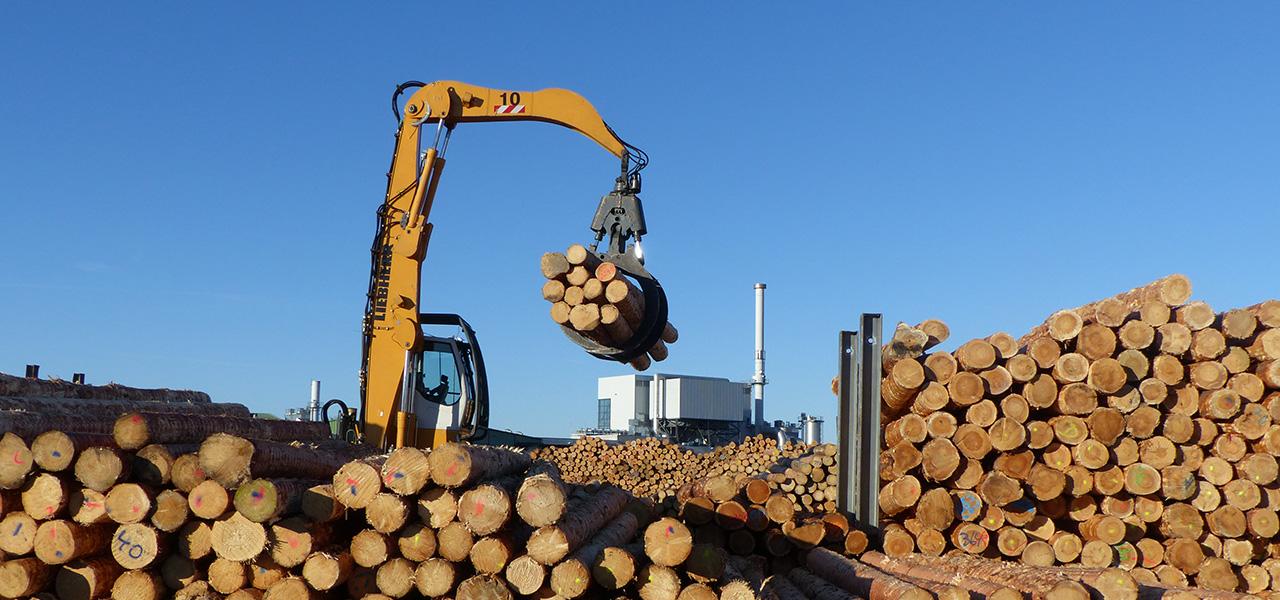 Forst und Transportdienstleistungen
