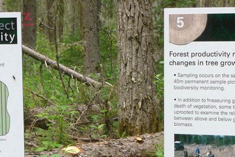Schilder, die für das EMEND-Programm im Mercer Peace River Forstwirtschaftsgebiet in Nord-Alberta werben