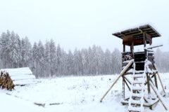 Lagerplatz für Holz von Mercer Holz