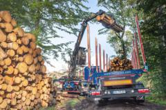 Ein Greifer beim Verladen von Rundholz auf eine LKW-Ladefläche auf einer Mercer Holz Baustelle im Harz.