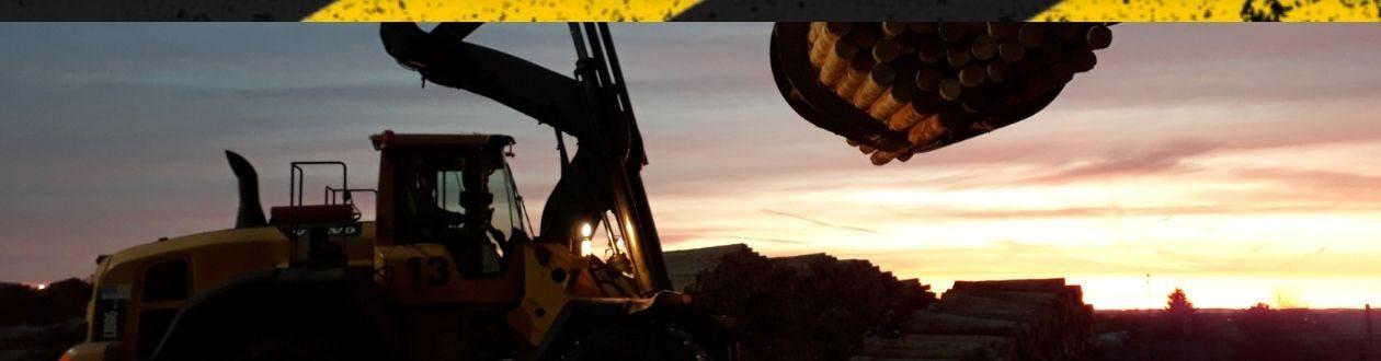Ein Greifer, der Rundholz durch den Rundholzplatz von Mercer Timber Products in der Nähe von Friesau transportiert, bei Sonnenuntergang.